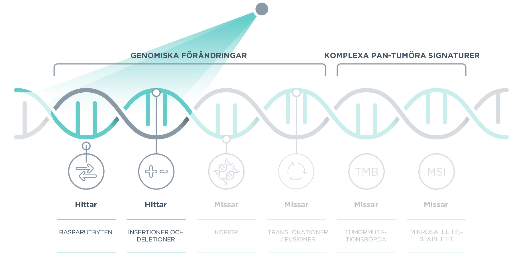 Multigene hotspot tests risk missing genomic alterations while comprehensive genomic profiling broadly analyses the genome to identify all relevant alterations